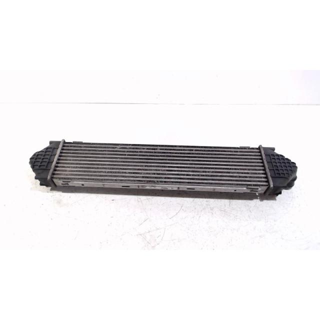 Intercooler radiator Ford Kuga I (2008 - 2012) SUV 2.0 TDCi 16V 4x4 (G6DG)